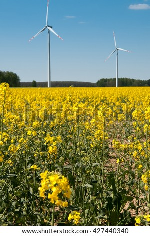 Landscape of windmills producing energy on a yellow rape field with view of the beautiful sky
