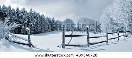 landscape of wood with snow in mountain in winter - stock photo