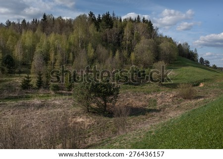 landscape of woods and green field blue sky and white clouds