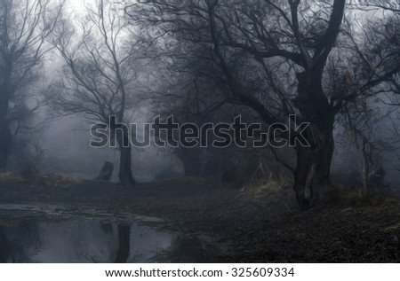 Landscape painting showing spooky old forest on cold autumn day. - stock photo