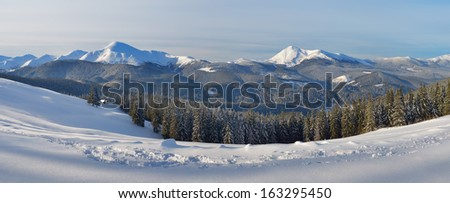 Landscape panorama of winter mountains. Frosty day. Carpathians, Ukraine, Europe. View of the mountain range Chornohora and Mount Goverla  - stock photo