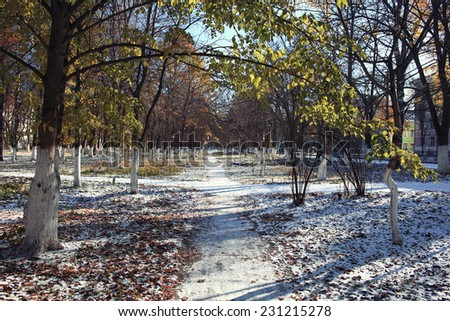 landscape park autumn trees snow forest