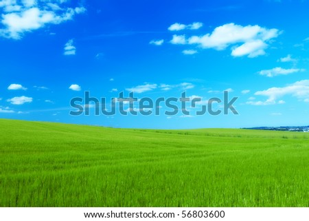 Landscape photo - green field, clouds, and blue sky - stock photo