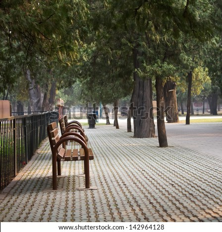 Landscape photo of quiet park resting area in pine trees in summer - stock photo