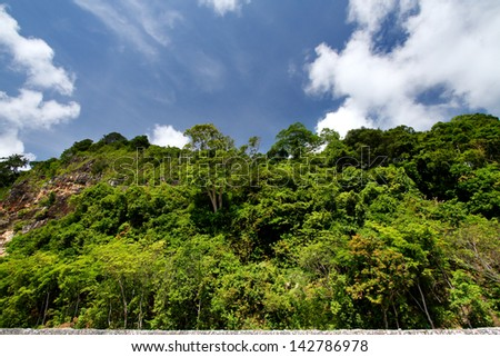 Landscape photo of the tops of a clump of trees in chanthaburi province, Thailand