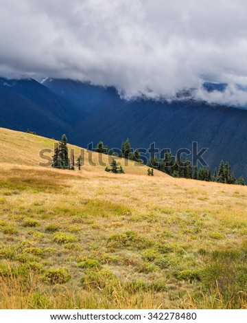 Landscape photo shows grassy hills of hurricane ridge with foggy mountain peaks behind - stock photo