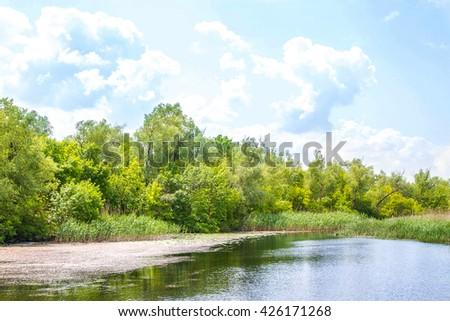 landscape river Dnieper marshes and Kherson