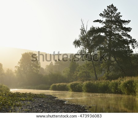 Landscape, river,forest in the mist