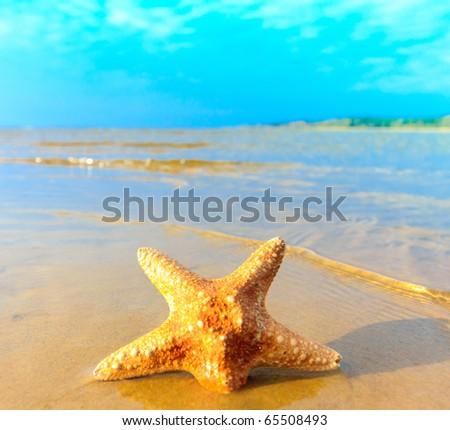 Landscape Sand Sea - stock photo