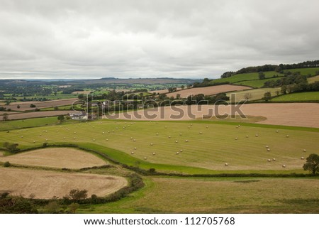 Landscape seen on the coastal path to Ladram Bay, Devon. - stock photo