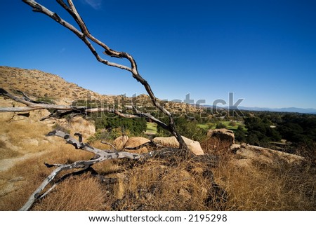 Landscape shot of an arid/dry mountain area with a previously burned tree branch