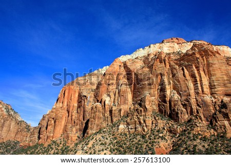 Landscape shot of grasses and shrubs and mountains in Zion National Park, Utah, USA [United States of America] - stock photo