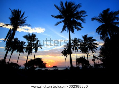 Landscape Silhouetted of coconut tree during sunset, Thailand - stock photo