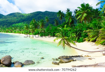 Landscape Summertime Shore - stock photo