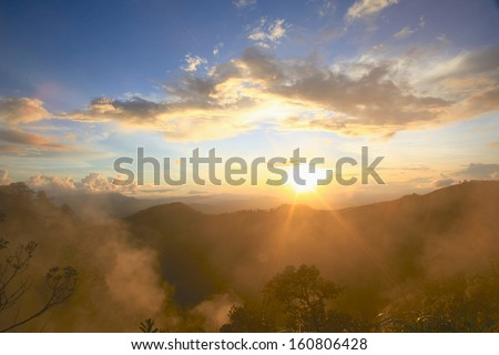 Landscape, sunny dawn in a field - stock photo