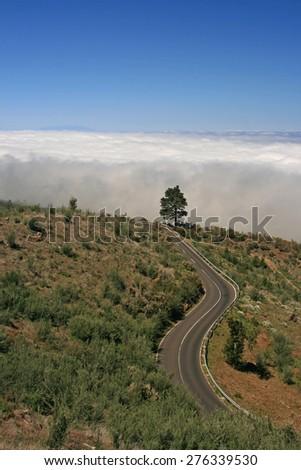 landscape tenerife - stock photo