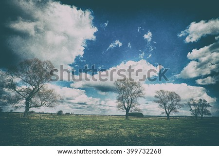 Landscape - trees on the meadow. Image with old, analog camera filter. Spring time. Narew river valley, Poland.