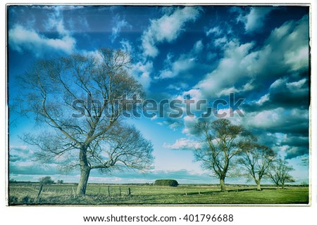 Landscape - trees on the meadow. Image with old, analog camera filter with frame. Spring time. Narew river valley, Poland.  - stock photo