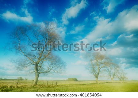 Landscape - trees on the meadow. Spring time. Narew river valley, Poland. - stock photo
