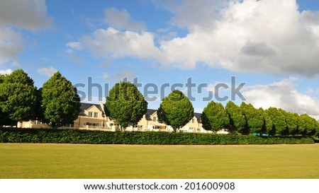 Landscape View a Lawn, Tree Row and Hedge in a Beautiful City Park  - stock photo