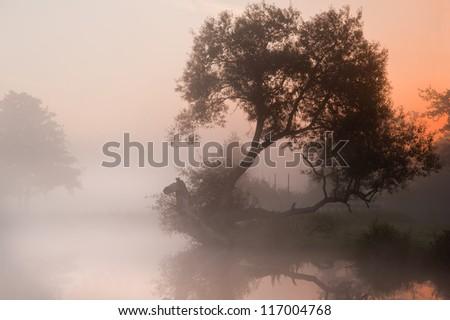 Landscape view across foggy river at sunrise - stock photo
