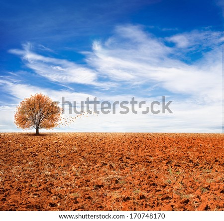 landscape view, blue sky, autumn, use as background - stock photo