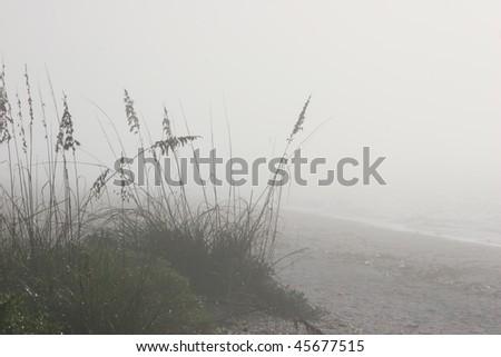 landscape view foggy dawn beach Sanibel Florida - stock photo