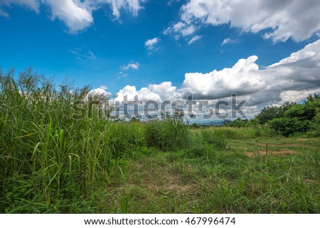 Landscape View in Rural Area - Pakchong Thailand