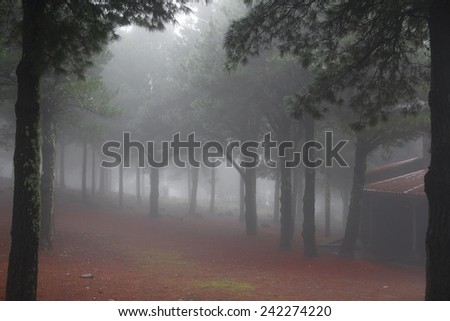 Landscape view of a deserted woodland and small hut wrapped in mist giving an ethereal mystical background with an opening between the trees in the foreground - stock photo