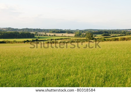 Landscape View of a Farmland in Rural Wiltshire - stock photo