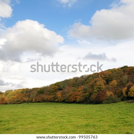 Landscape View of a Field in the Frome Valley in Somerset near the City of Bath in England