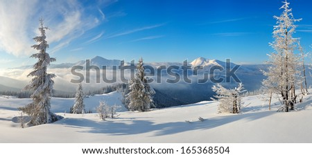 Landscape view of a winter day in a mountain valley. Carpathian mountains, Ukraine, Europe