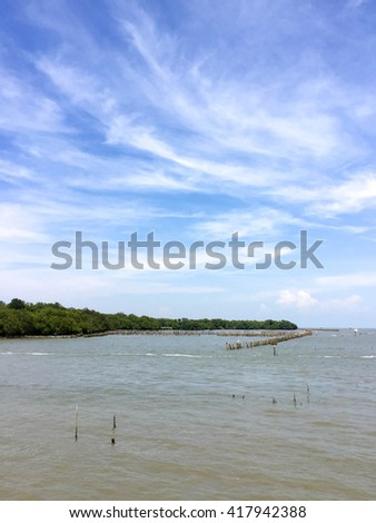 Landscape view of coastal forest conservation site in blue sky - stock photo