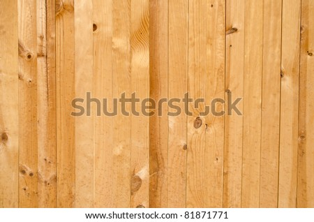 Landscape view of texture of pine wood background. - stock photo