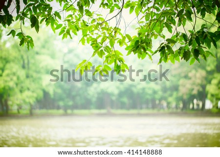 Landscape. Vintage tone of Morning sun light with tree lake in the park. picture for add text and background. Image has shallow depth of field. - stock photo