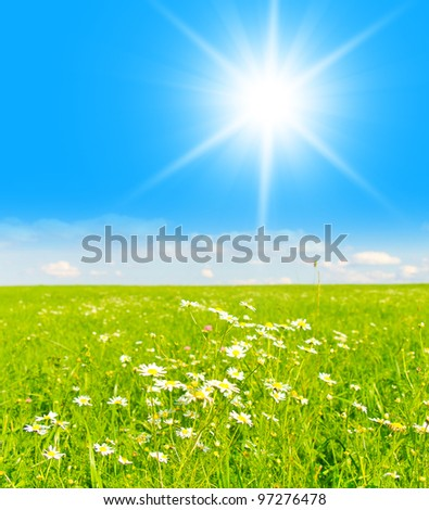 Landscape Wallpaper Summer Shining
