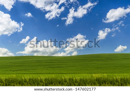 Landscape with a grass on hill and blue sky with clouds.