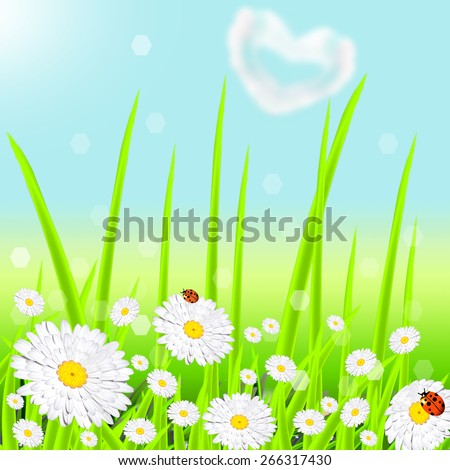 Landscape with a green grass and white flowers - stock photo