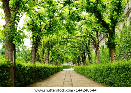 Landscape with Alley Park in the Wurzburger Residenze. - stock photo