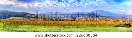 Landscape with autumn vineyards of wine route. France, Alsace - stock photo