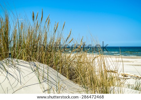 Landscape with  beach sea view, sand dune and grass, Leba, Baltic Sea, Poland, nature backgrounds - stock photo