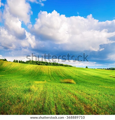 Landscape with bright green grass and cumulus clouds. Sunny summer day. - stock photo