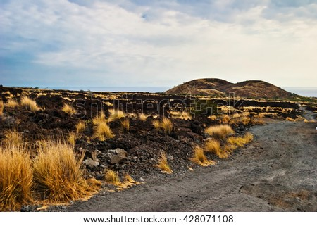 Landscape with bushes of grass on volcanic soil in gloomy weather. Big Island . Hawaii. USA  - stock photo