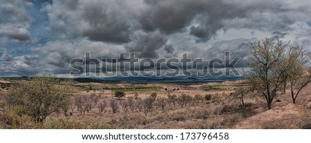 landscape with clouds and vineyards - stock photo