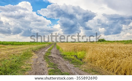 Landscape with clouds and wind turbines in wheat fields in the background - stock photo