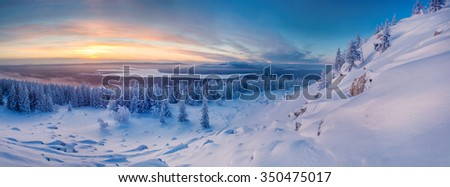 Landscape with cold and warm colors with mountains, forest and snowfield