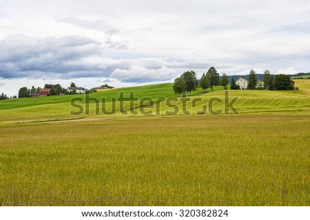 Landscape with colored field and few farm houses, Norway - stock photo
