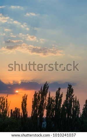 landscape with dramatic light - orange clouds and the outline of trees at sunset