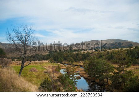Landscape with evergreen trees, small river and mountains in the background with cloudy sky at autumn - stock photo