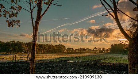 Landscape with field and sky on sunset. A wonderful and warming landscape at sunset. - stock photo